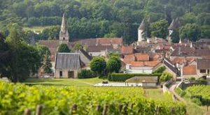 Programme immobilier neuf Savigny Les Beaune