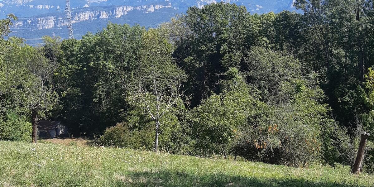 Terrain Constructible à vendre : Moirans . 511 m²